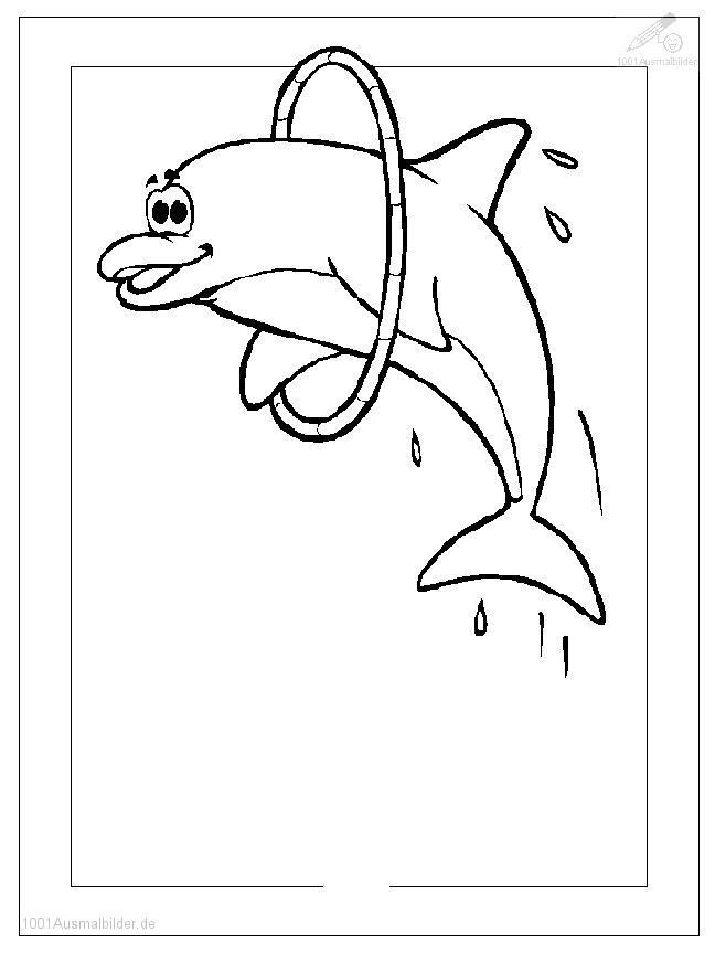 Delphin Malvorlage