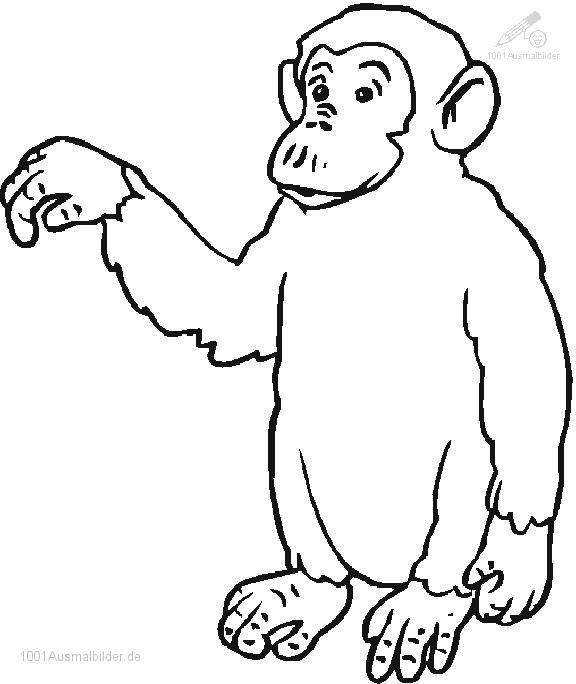 1001 MALVORLAGEN : Tiere >> Affe >> Malvorlage Affe&#8221; title=&#8221;1001 MALVORLAGEN : Tiere >> Affe >> Malvorlage Affe&#8221; width=&#8221;200&#8243; height=&#8221;200&#8243;> <img src=