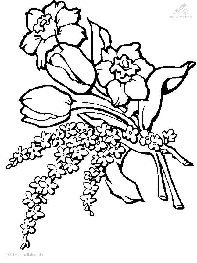 1001 Malvorlagen Pflanzen Blumen Blume Malvorlage
