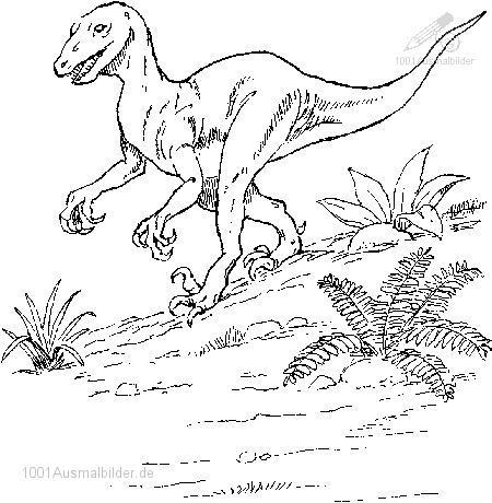 malvorlage: malvorlage-dinosaurier-11