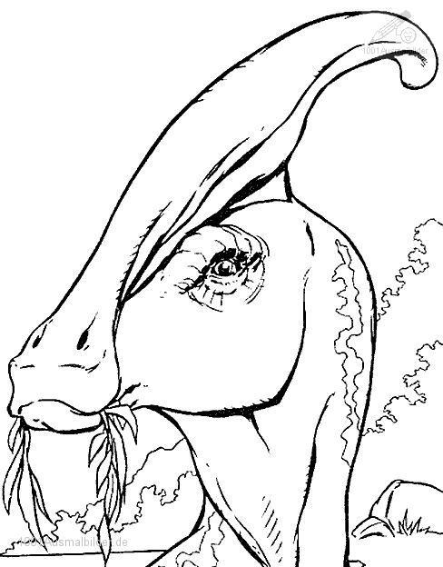 malvorlage: malvorlage-dinosaurier-24