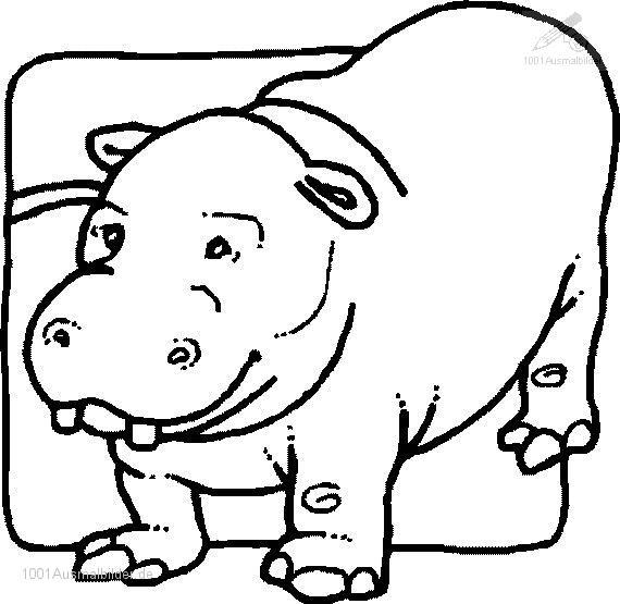malvorlage: malvorlage-flusspferd-10