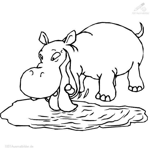 malvorlage: malvorlage-flusspferd-5
