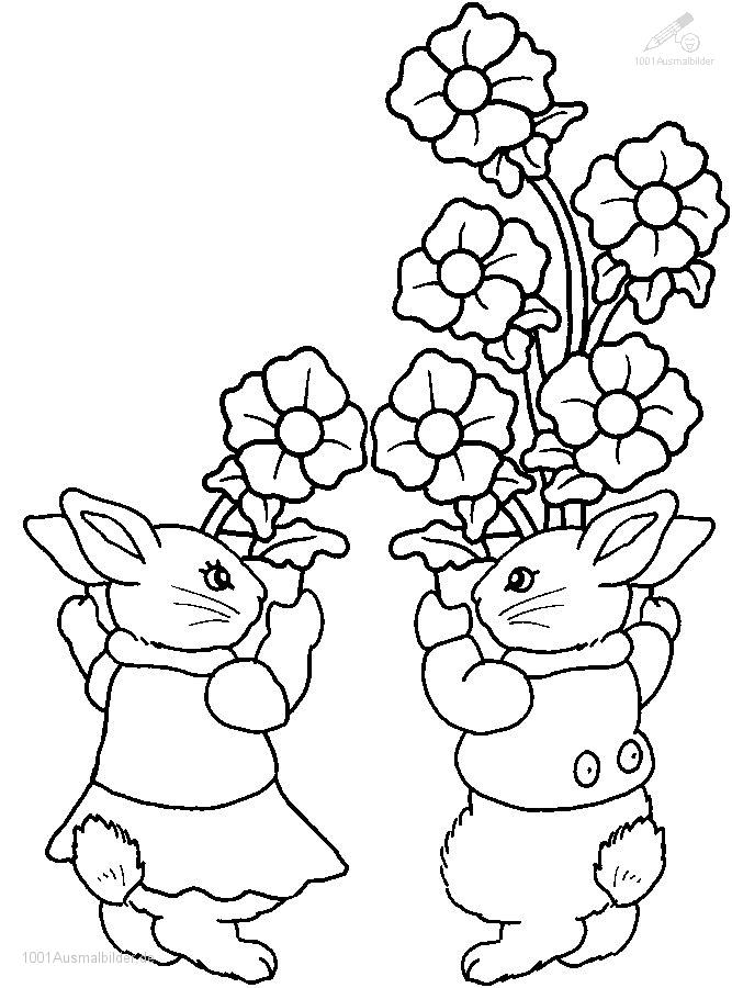 Malvorlage Fruhling Kaninchen