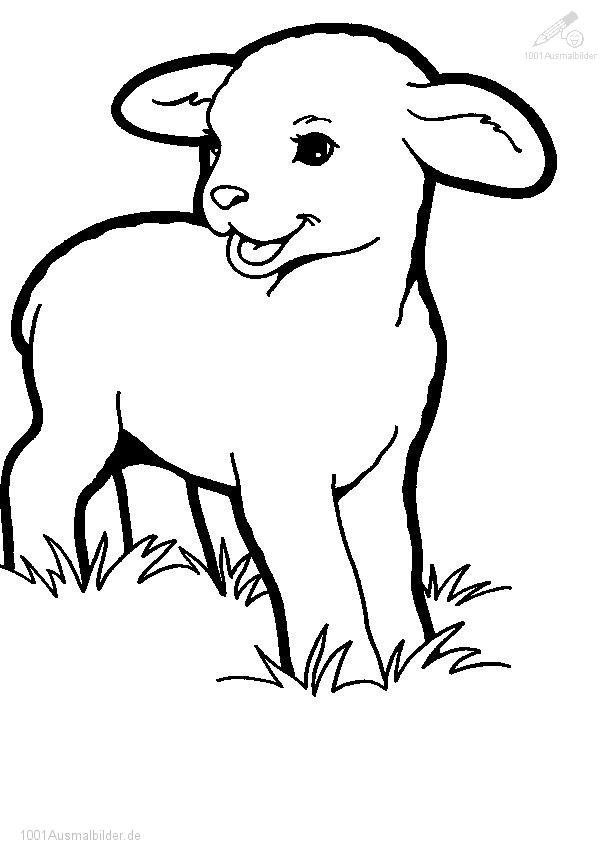 Malvorlage Fruhling Lamm