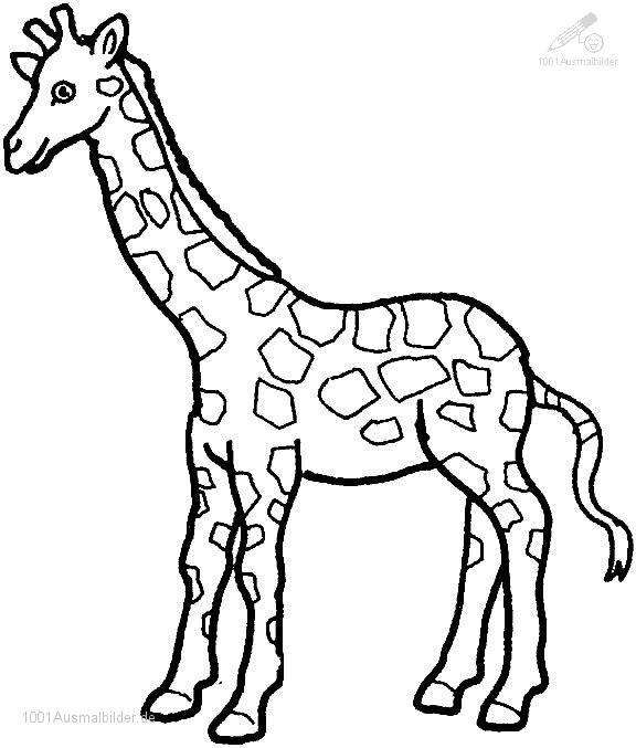 malvorlage: malvorlage-giraffe-6
