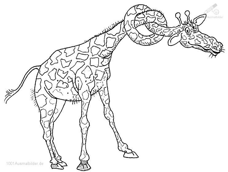 malvorlage: malvorlage-giraffe-9