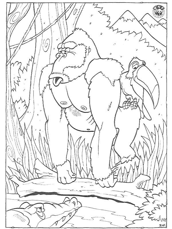 malvorlage: malvorlage-gorilla