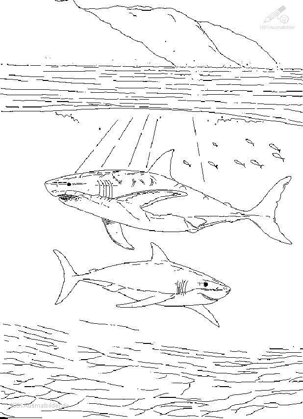 Malvorlage Grosse Haie