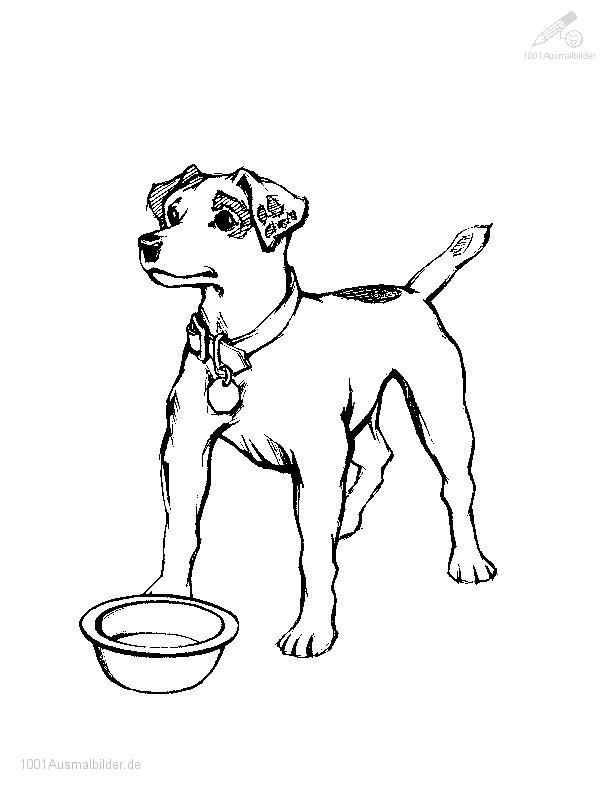 malvorlage: malvorlage-hund-1