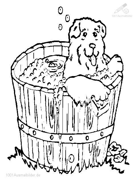 Hund ins Bad