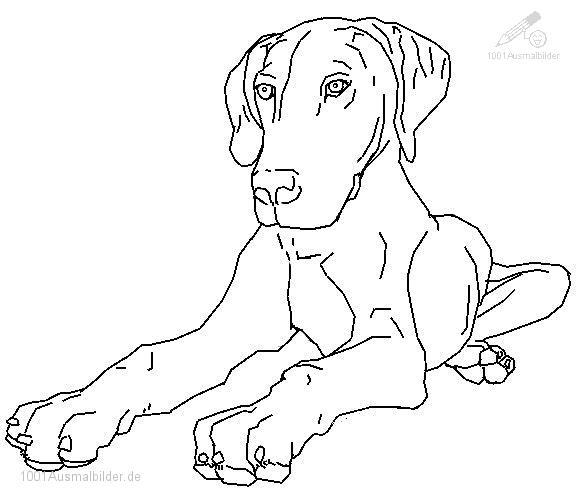 malvorlage: malvorlage-hund-13