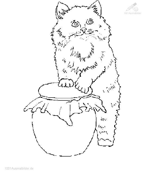 Malvorlage Kitten