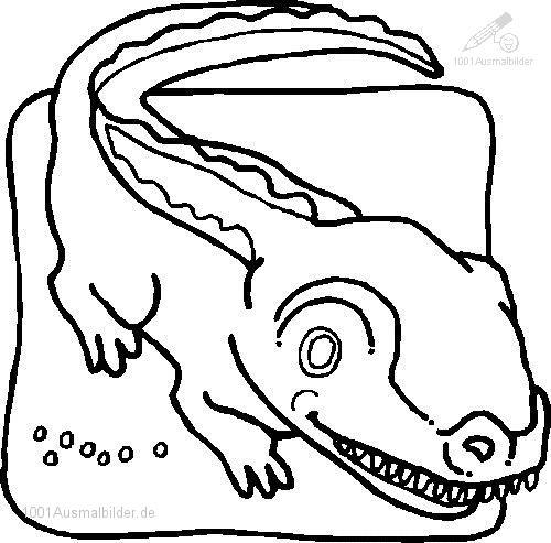 Krokodil Malvorlage