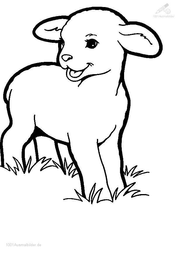 Malvorlage Kleines Lamm