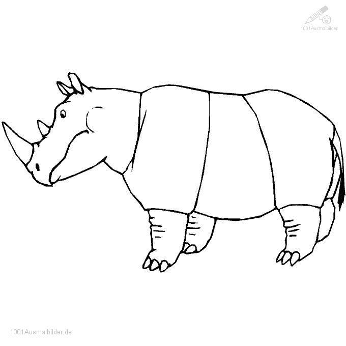 1001 Malvorlagen Tiere Nashorn Malvorlage Nashorn