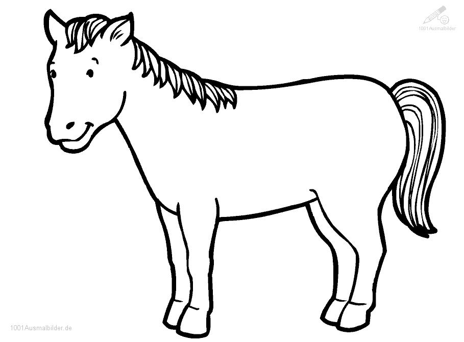1001 MALVORLAGEN : Tiere >> Pferde >> Malvorlage Pferd
