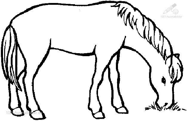 kostenlose malvorlagen pferde