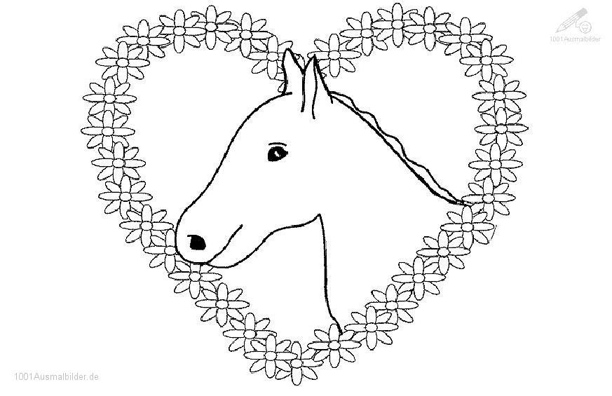 1001 Malvorlagen Tiere Pferde Malvorlage Pferd