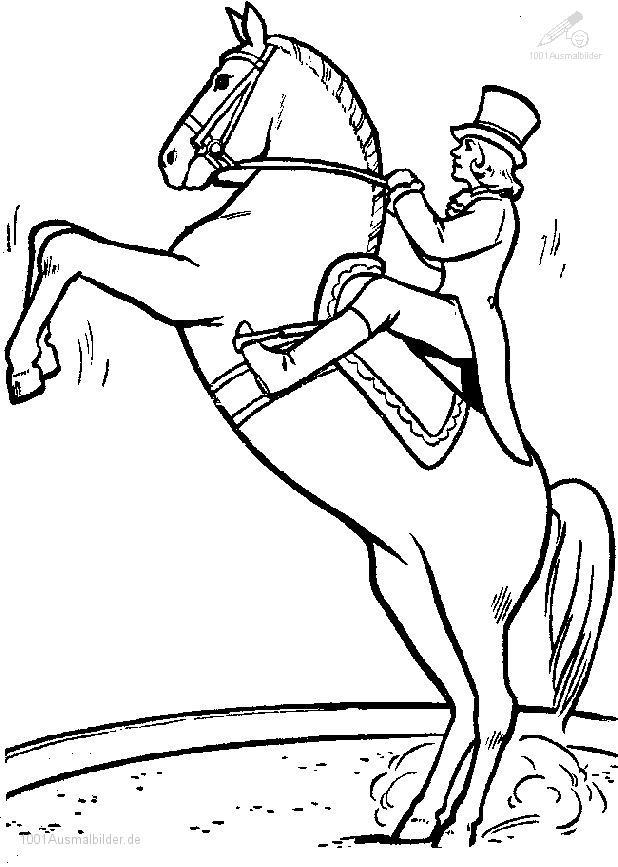 malvorlage: malvorlage-pferd-7