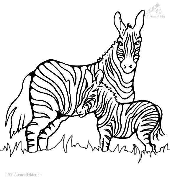 Malvorlage Zebra Mutter mit Jung