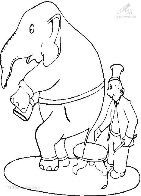Malvorlage Zirkus Elefant