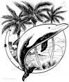 Malvorlage Delphin>> Malvorlage Delphin