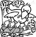 Malvorlage Fruhling Vogel >> Malvorlage Fruhling Vogel