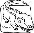 Krokodil Malvorlage>> Krokodil Malvorlage