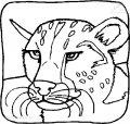 Malvorlage Tiger>> Malvorlage Tiger