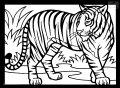 Malvorlage Tiger >> Malvorlage Tiger